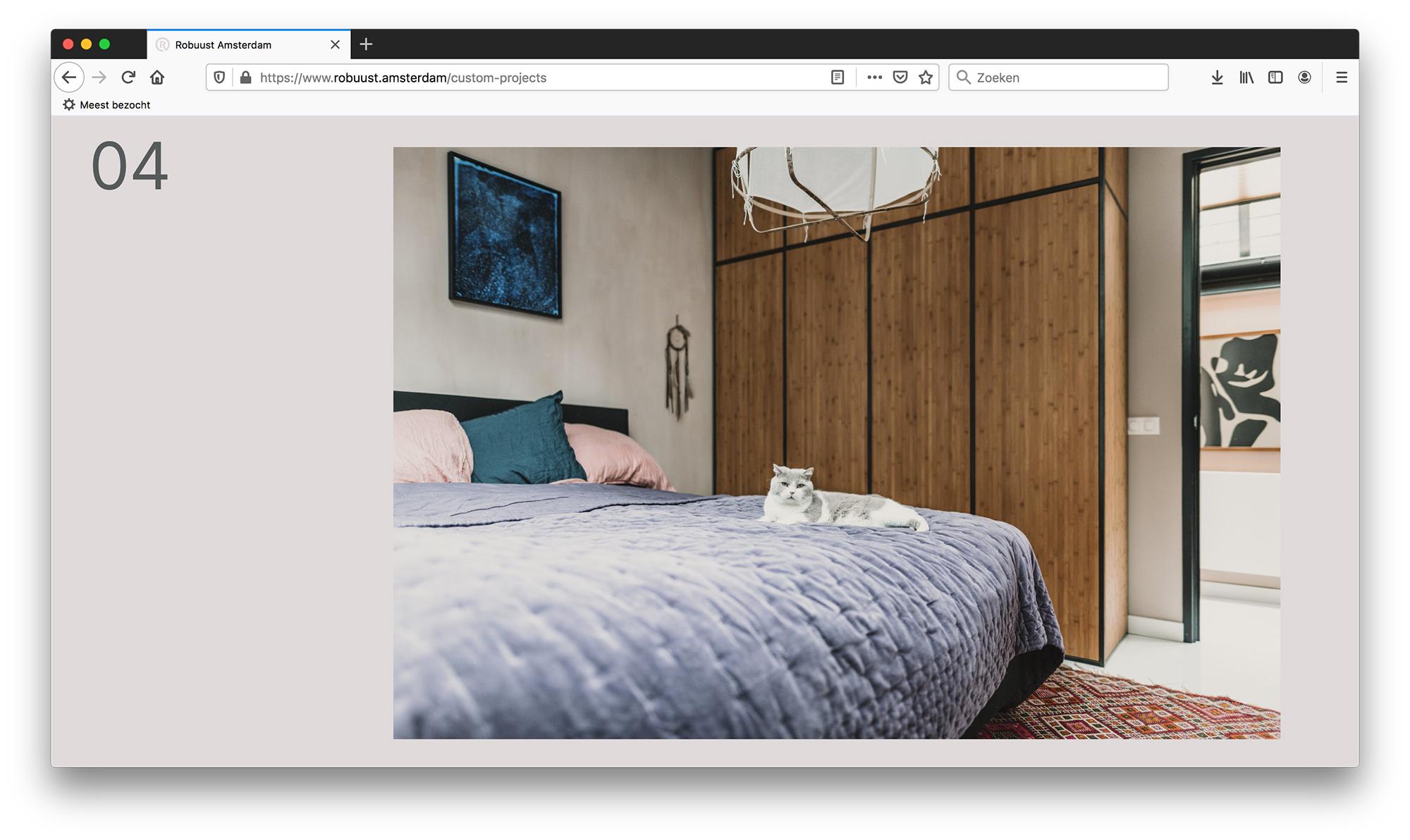 Robuust_site10.jpg